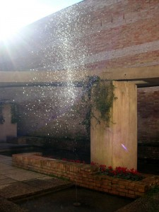 Acqua fredda al padiglione Scarpa. Biennale di Venezia.