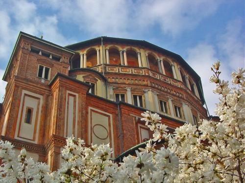 Milano - Amo Milano