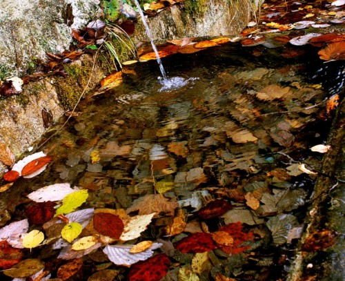 Cessapalombo - Fonte di Foglie Monti Sibillini - Monastero di Cessapalombo  -