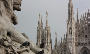 Duomo di Milano e i piccioni