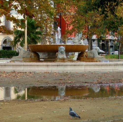Napoli - Il piccione che credeva di vedere doppio