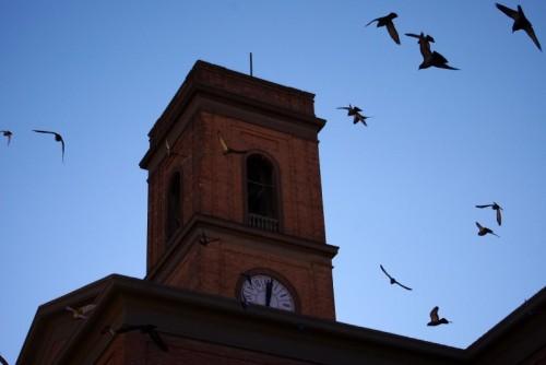 Livorno - Din Don...