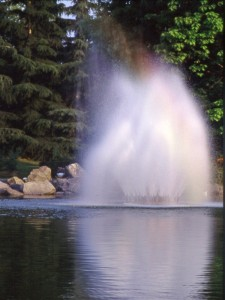 laghetto con fontana