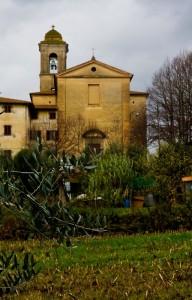L'ulivo e la Pace ……S. Pietro e Paolo