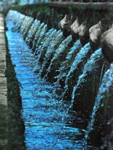 Water in sequence