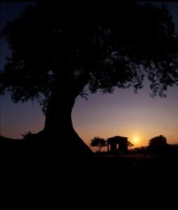 tramonto nella valle degli dei