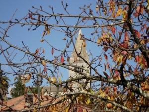 i fieschi in autunno
