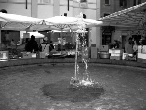 Fontana in prestito…