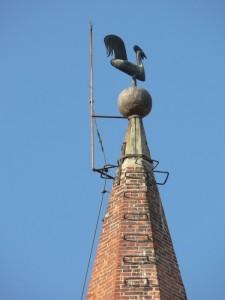 Gallo sulla guglia del campanile della Chiesa di San Giovanni
