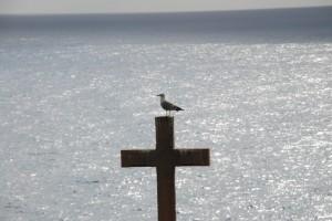gabbiano si riposa su croce