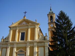 Il pino della chiesa