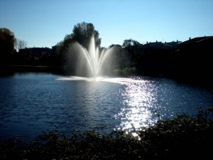 Fontana nel laghetto 2