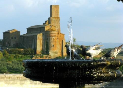Tuscania - fontana, piccioni e cattedrale