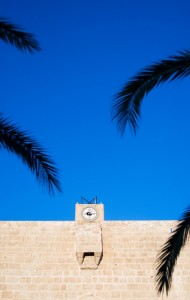 all' ombra di una palma