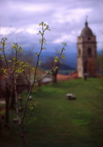 poetico campanile,immerso nelle verdi colline