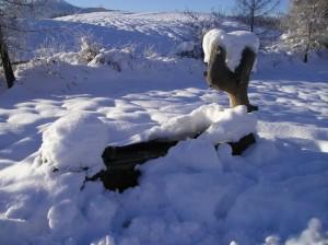 Fontana ricoperta di neve