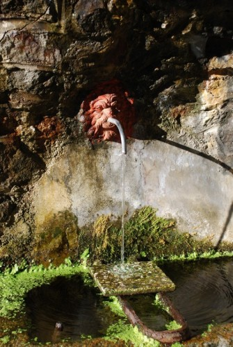 Valle San Nicolao - Mascherone...con alghe