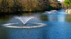 fontane in acqua