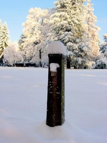 Borgosesia - Fontanella nel parco