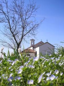 San Pelagio….di sole e d'azzurro!!!!