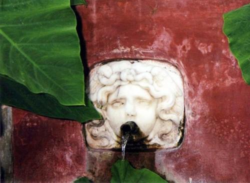 Salerno - Giardini della Minerva -particolare-
