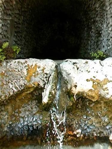 Salerno - Giardini della Minerva 2 -particolare-