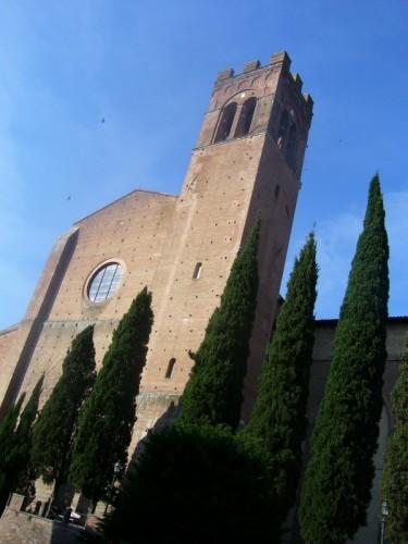 Siena - SIENA, S. DOMENICO