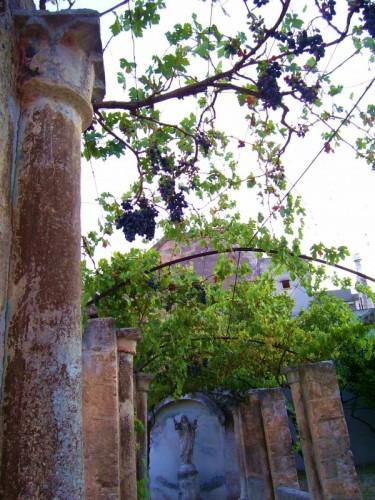 Grottaglie - GROTTAGLIE, GIARDINO MEDITERRANEO E IL CRISTO