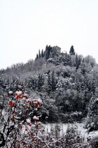 Macchie di colore nella neve