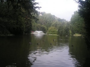 Fontana nel parco