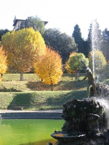 Autunno in giardino1
