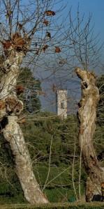 il campanile imprigionato