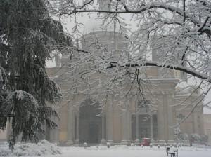 Il Duomo di Vercelli e L'Albero
