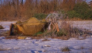 Fontana selvatica invernale