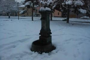 vedovella sotto la neve