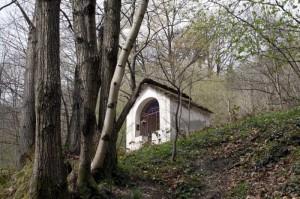 Lungo il sentiero tra Cossogno e Rovegro