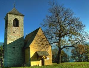 La Chiesa e l'albero