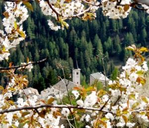 Chiesa tra i fiori