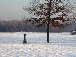 fontana al parco nord Milano
