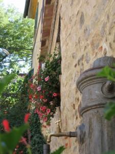 Fontanella di Sticciano, nella calura estiva