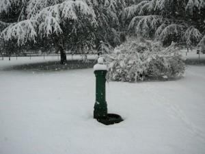 la fontanella col pennacchio bianco