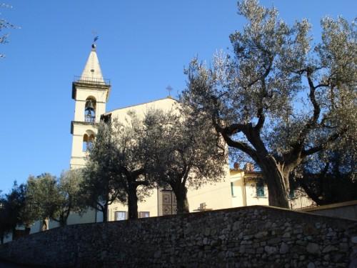 Bagno a Ripoli - Tra ulivi e muri a secco