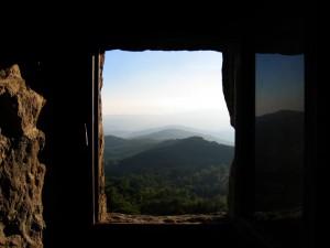 il bosco secolare della santuario