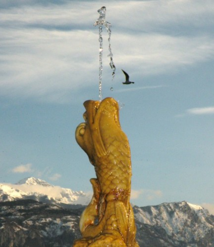 Menaggio - Fontana del pès