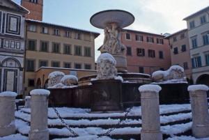 "La fontana ""dei leoni"""