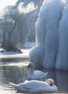 Il timido getto della fontana ghiacciata