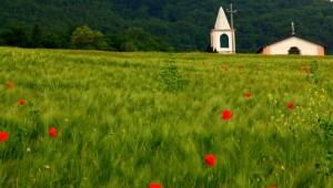 Il campo e la Chiesa