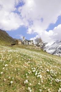 Madonna della Neve in Val Biandino