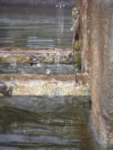 Particolare fontana di Coste, Maser