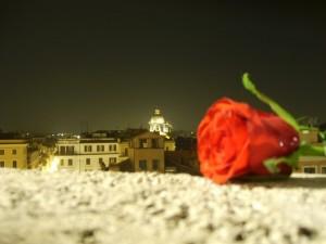 Rose rosse per te…